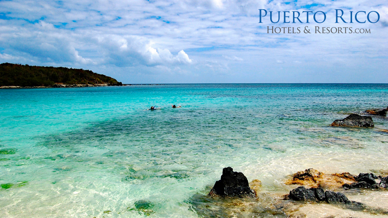 vieques-puerto-rico-hotels-best-q22s